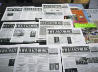 """Број претплатника листа на румунском """"Тибискус"""" због ковида смањен за 15 одсто"""